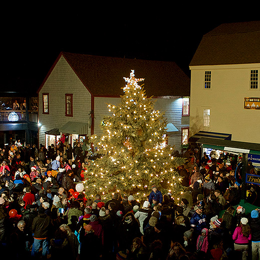 49th Annual Christmas Tree Lighting