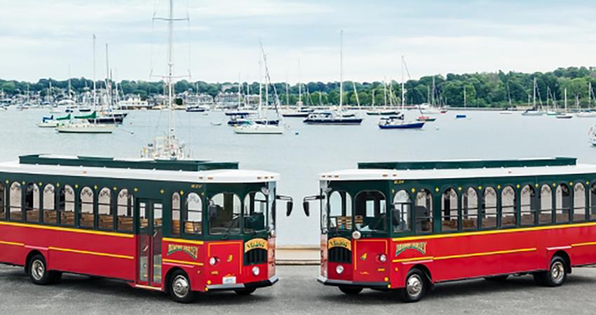 Viking Tours Buses