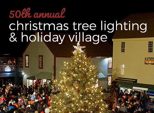 Christmas Tree Lightning & Holiday Village